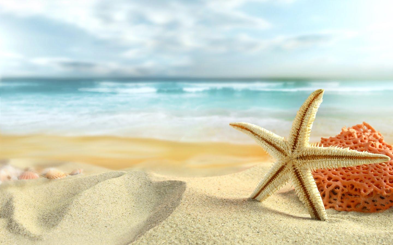 Η SocialSpace Academy κλείνει για θερινές διακοπές